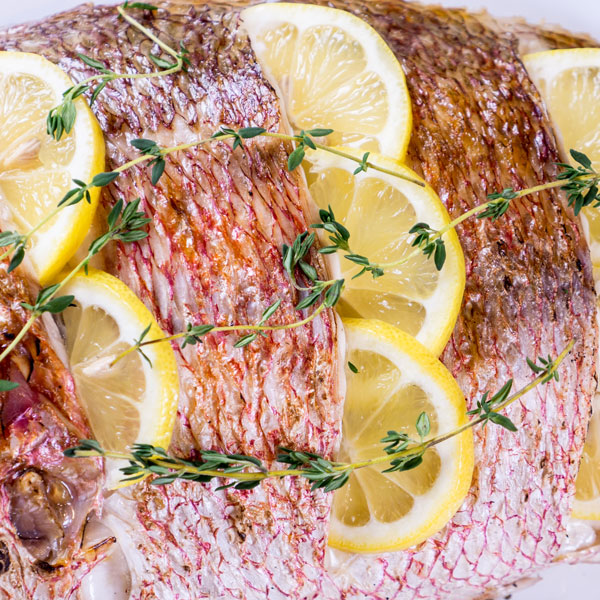 whole-red-snapper-2_1
