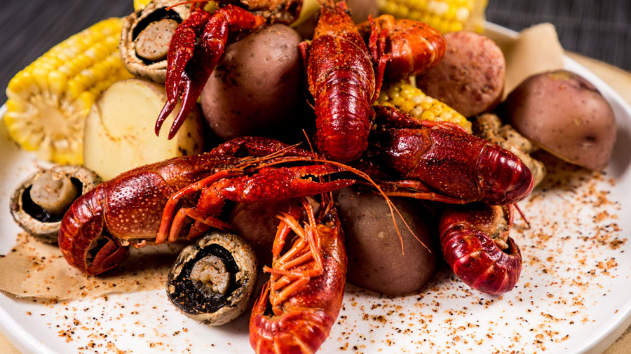 crawfish-3